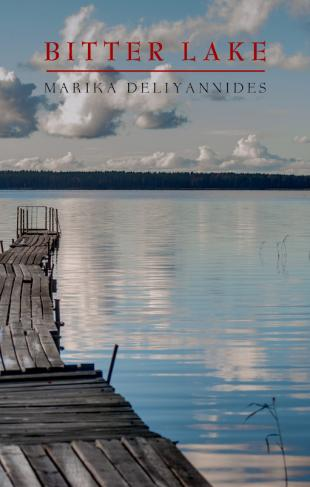 Cover image of